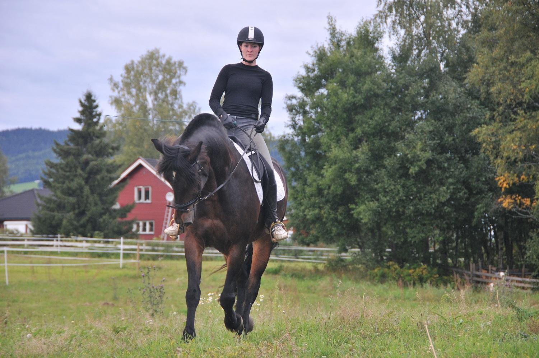 hest med astma
