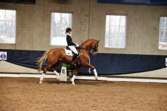 Han er utrolig hest pik
