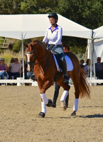 Ny hest til charlotte dujardin for Dujardin kelly